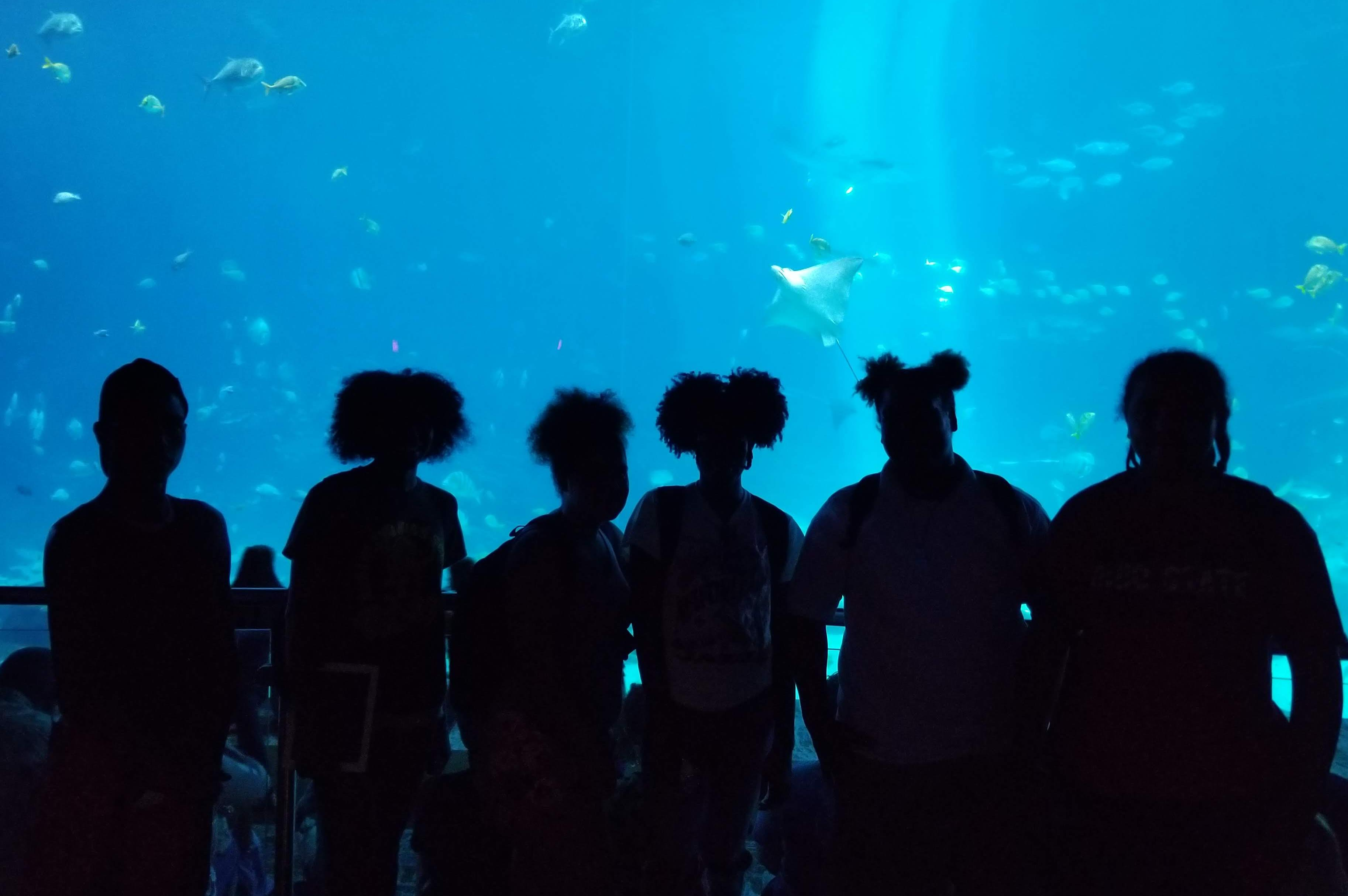 Upward Bound students standing in front of a large aquarium.